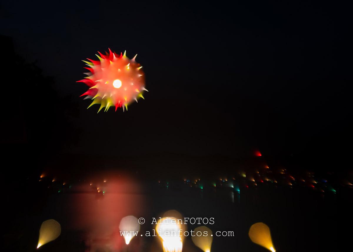 Fireworks 9442