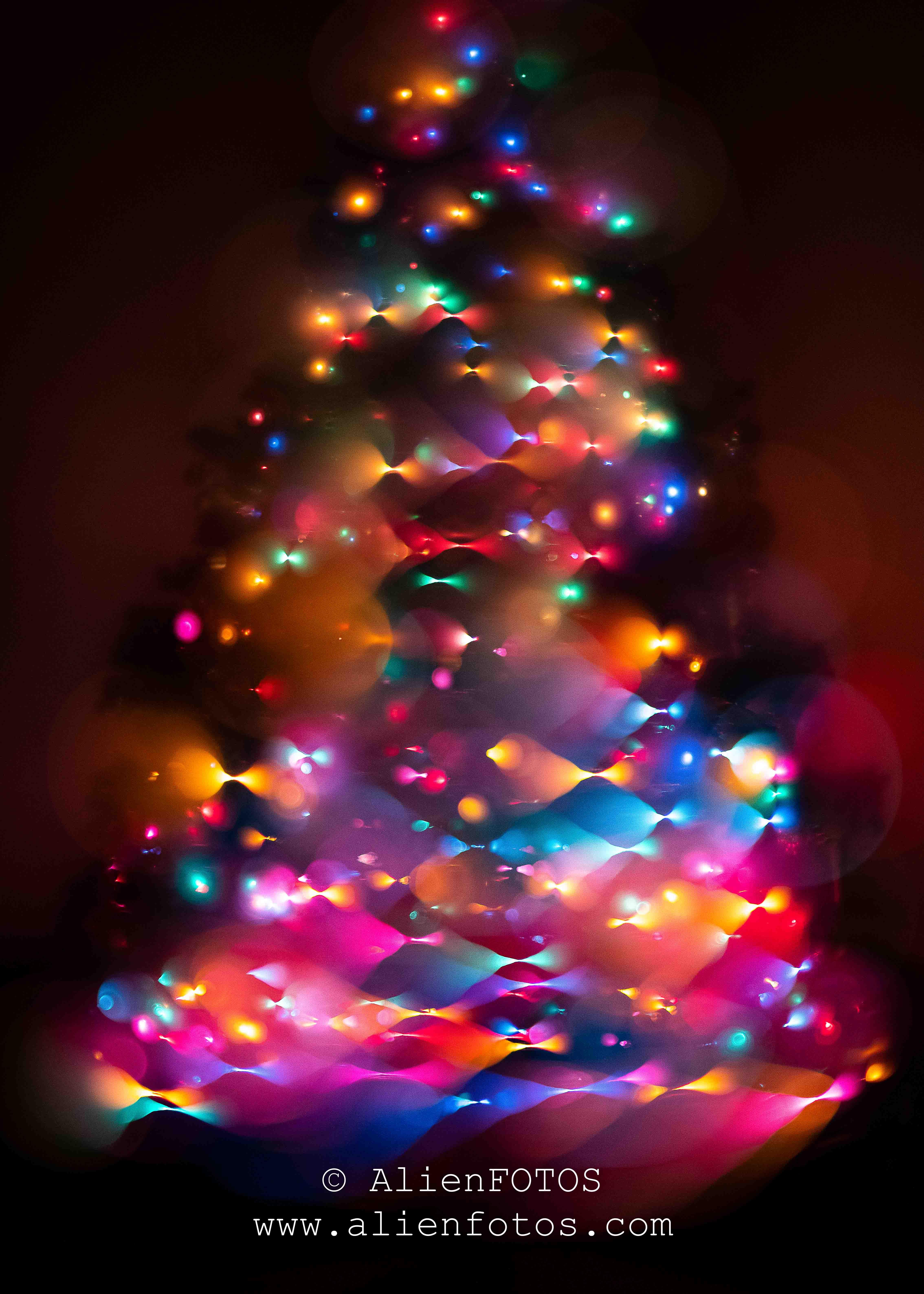 Christmas 3498